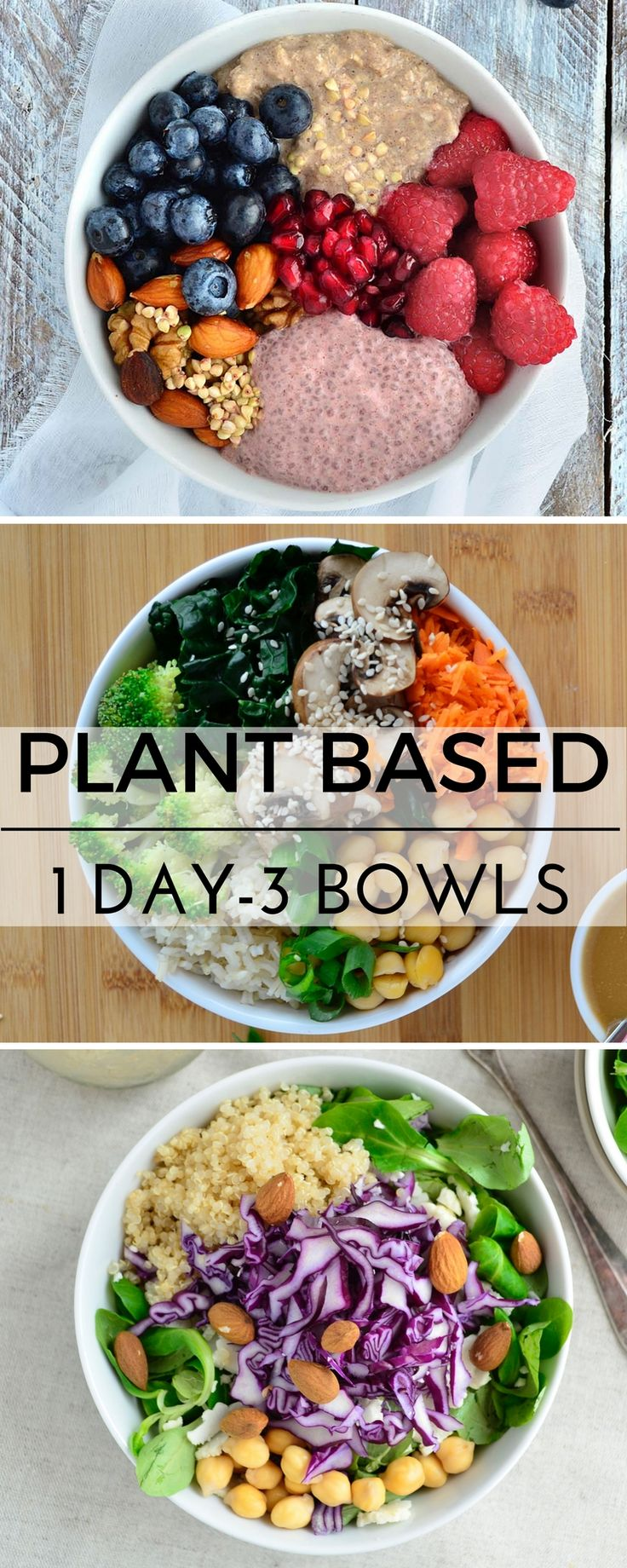 Diet plan to lose weight plant based recipes vegan recipes diet forumfinder Image collections